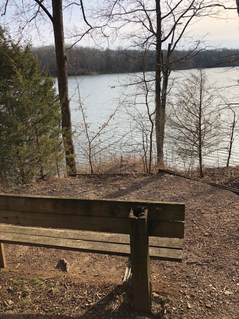 Hematite Lake Trail Bench