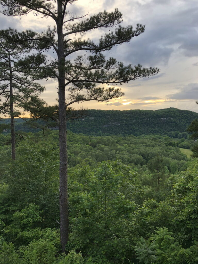 Favorite Vacation Spot - Mountain View Arkansas view from cabin.