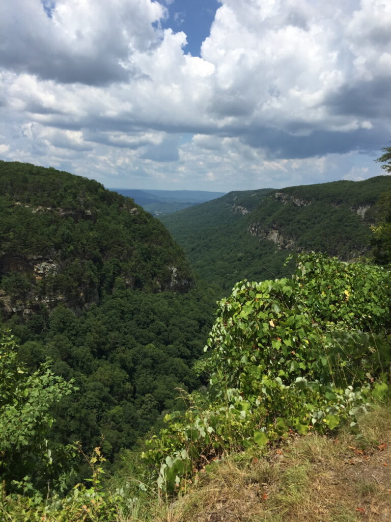 Favorite Vacation Spot - Cloudland Canyon State Park View