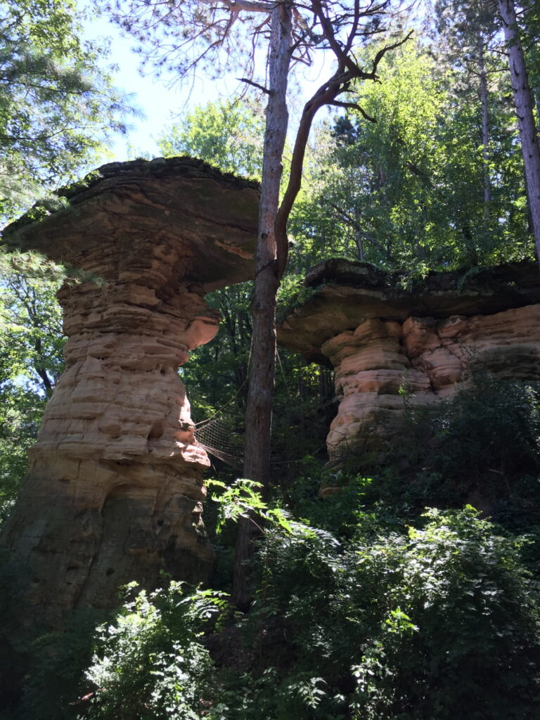 Favorite Vacation Spot - Wisconsin Dells - Jumping Dog Rock