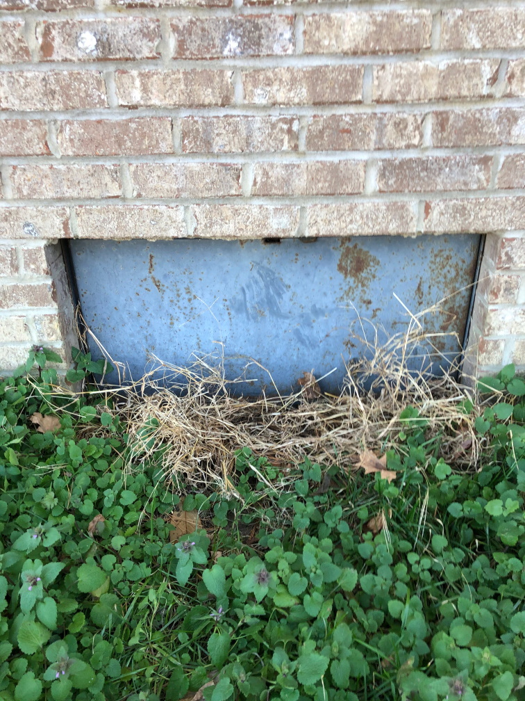 Tips to help save money when buying a home Check the crawl space