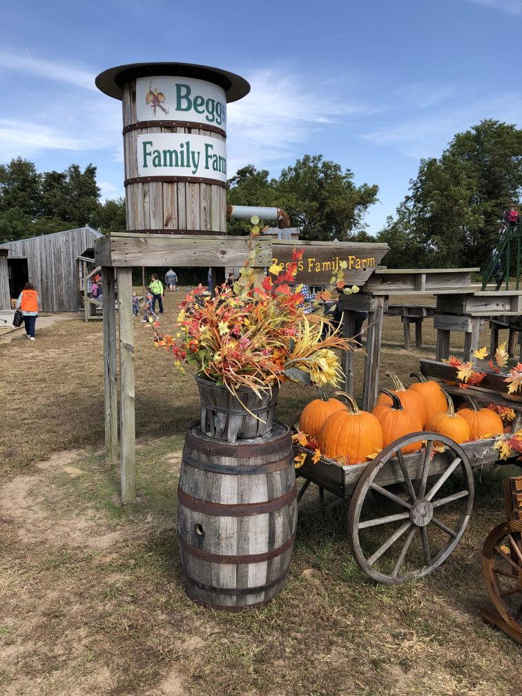 Beggs Family Farm Sikeston MO